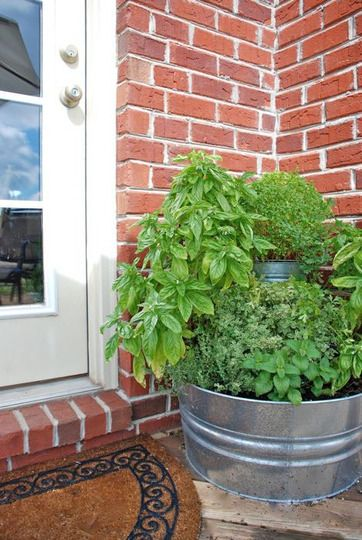 Gardening Without A Garden: 10 Ideas For Your Patio Or Balcony. Galvanized  BucketsMetal ...