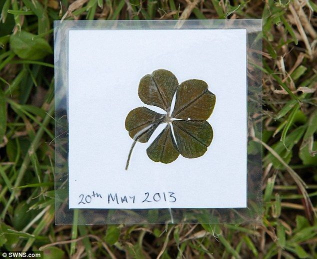 Following her rare discovery in Somerset UK, schoolgirl asked her mother to preserve the lucky five leaf clover by  laminating it alongside the date