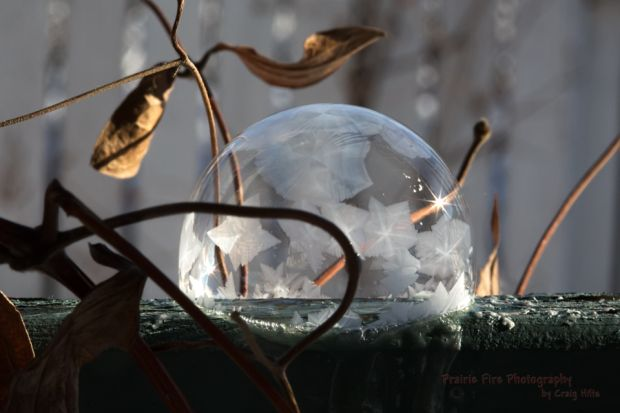 'During the summer, Craig Hilts chases storms and aurora, but when it's too cold outside to do either, he takes pictures of bubbles.' - Ashleigh Mattern    Frozen bubble photography in your own backyard: