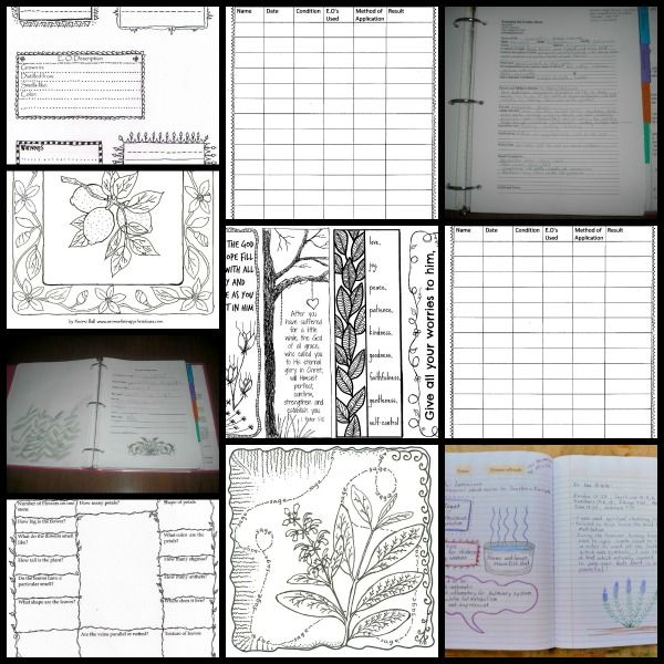 25 Best Images About Essential Oil Binder On Pinterest How To Make An Full Of And Free Printables