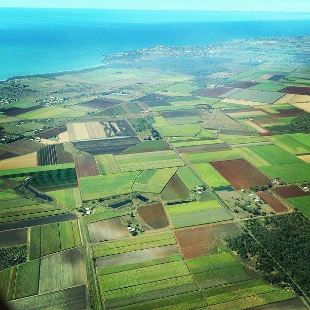 .[ @ ] markonthemap The fields of Bundaberg #bundaberg #fields #aerial #