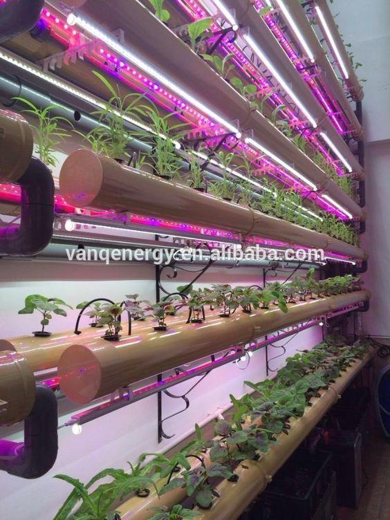 Shenzhen factory led hydroponic light,30w led grow tube for edible amaranth