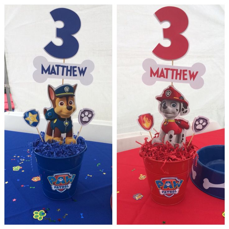 Paw patrol centerpieces  Chase and Marshall
