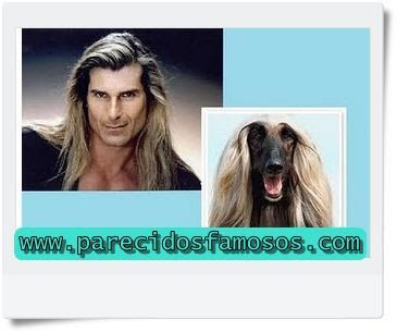 17 best images about personas con animales on pinterest georges w bush anderson cooper and - Animales con personas apareandose ...