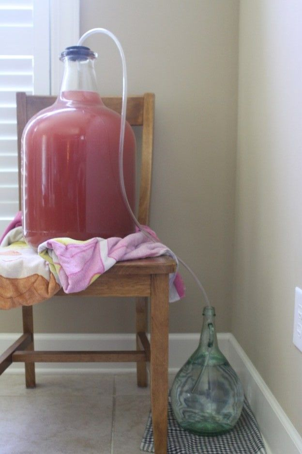 The Creative Hectic Homemakers: Homemade muscadine wine