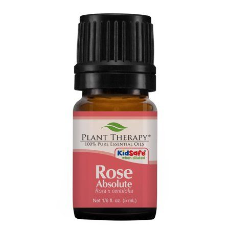Plant Therapy Rose Absolute Essential Oil | 100% Pure, Undiluted, Natural Aromat…