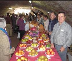 La fête de la pomme au Moulin d'Eschviller ce week-end, une des animations incontournable au Pays de Bitche ! Crédit photo : Républicain Lorrain