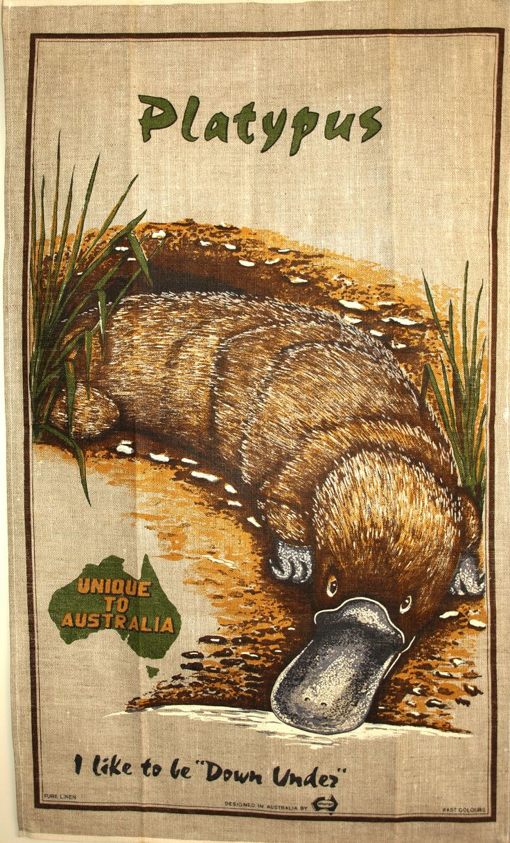 Australian Platypus Tea Towel - Vintage Retro Pure Linen Australia Native Wildlife Souvenir - New Old Stock by FunkyKoala on Etsy
