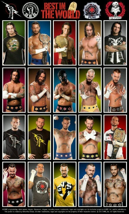 The many faces and styles of Punk!!                       Cm punk