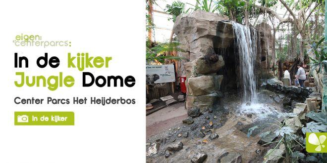 In de kijker | Jungle Dome Heijderbos