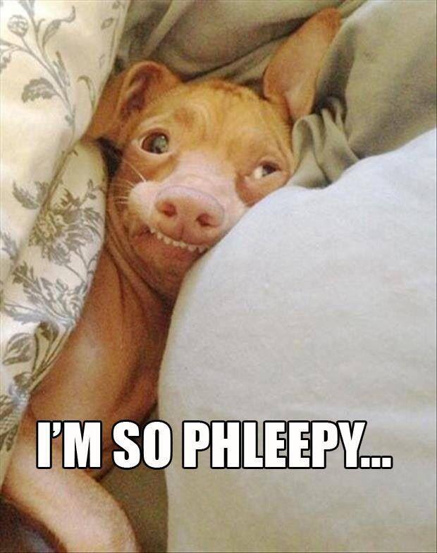 I'm phleepy too.