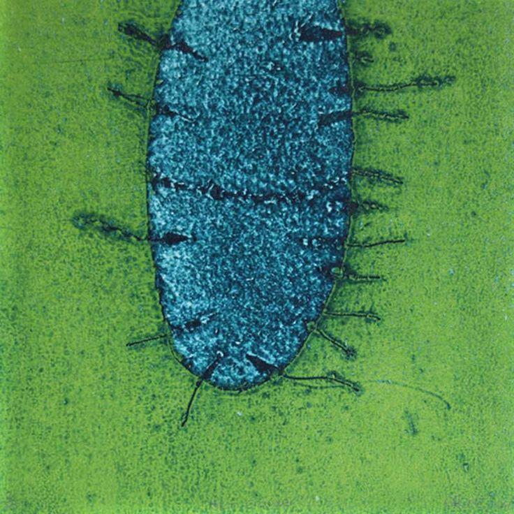 Skin Crawler