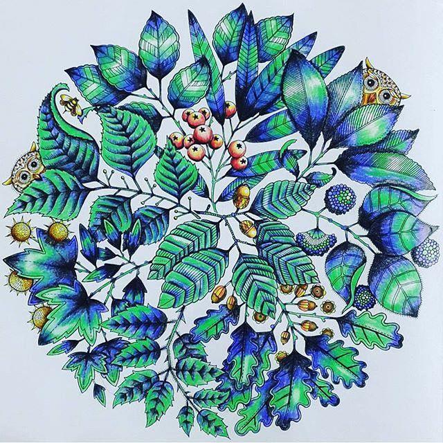 Mordi um pano aqui de tão lindo que achei esse! #arraso use #colorindolivrostop  #EzRepost @duygu_uzmezoglu with @ezrepostapp  #painting #mandala #renkler #esrarengiz_bahce  #esrarengizbahçe  #secretgarden  #esrarengizbahcem  #johannabasford #yapraklar #mandalaart #coloring #edamegitim #coloringbook