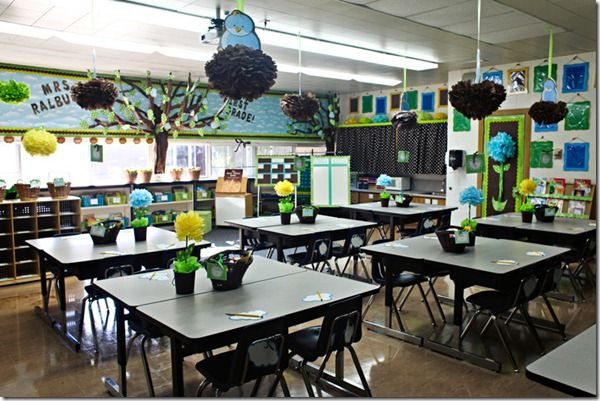 Green Classroom Decor ~ Blue green decor with bird s nest and d tree cute ideas