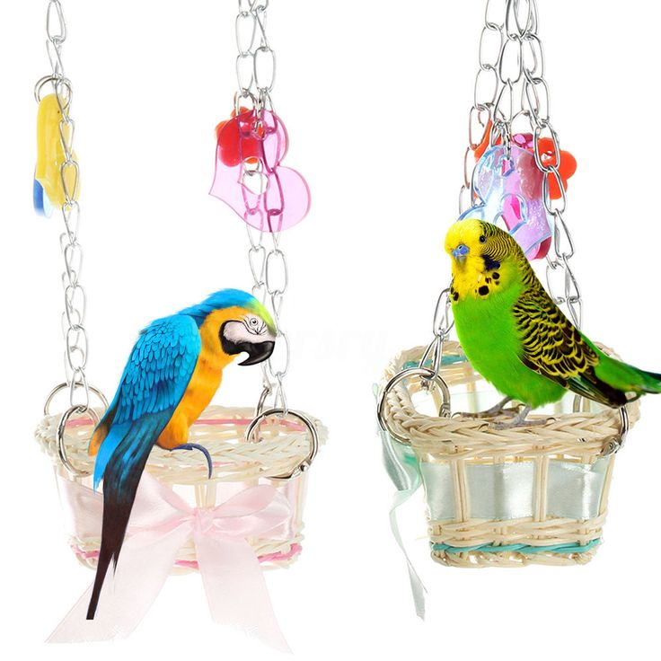 Haustier Vogelkäfig Wellensittich Papagei Schaukel Sittich Hängematte Spielplatz