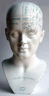 Antique Phrenology Busts