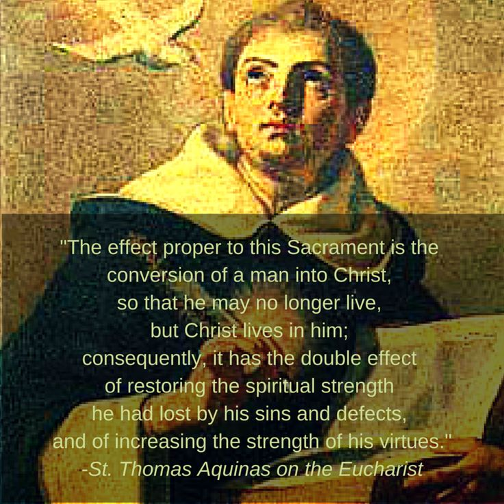 a biology of thomas aquinas doctor angelicus Find out information about doctor angelicus born 1225 or 1226, in the castle of roccasecca angelic doctor, st thomas aquinas aquinas, thomas born 1225 or.