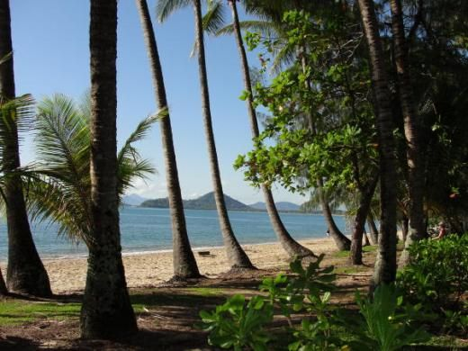 Palm Cove in Cairns, Australia