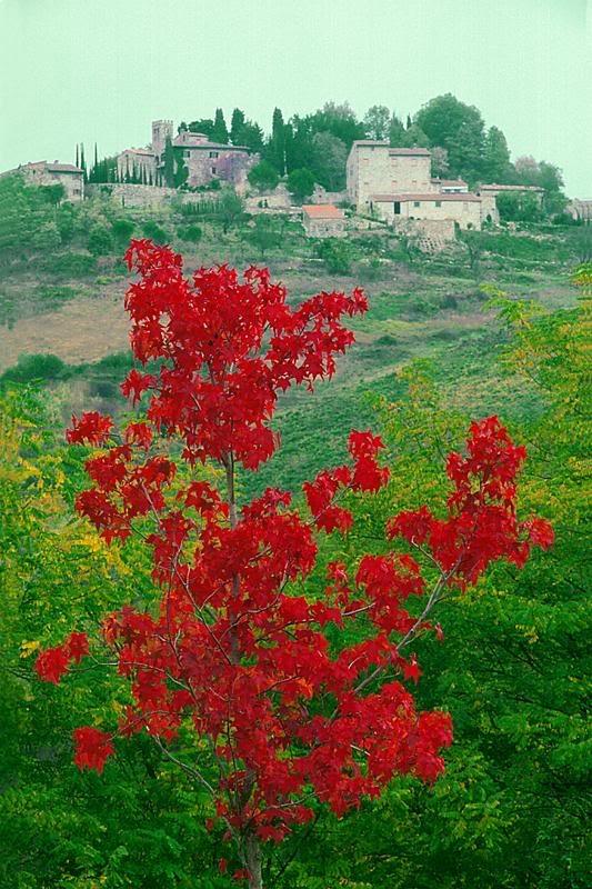Il Chianti, Italy