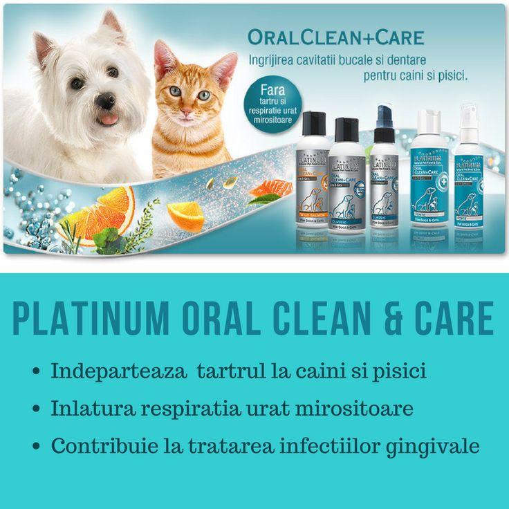 Daca cainele / pisica ta are probleme cu tartrul dentar, incearca Platinum Oral Clean & Care (gel sau spray). Rezultate vizibile dupa numai 14 zile de folosire.