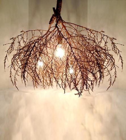 Classic Native Tumbleweed Chandelier by Same Tree on Scoutmob Shoppe   lighting  handmade  lamp159 best Lamps Lighting Chandeliers images on Pinterest   Lamp  . Luminary Lighting John Kent. Home Design Ideas