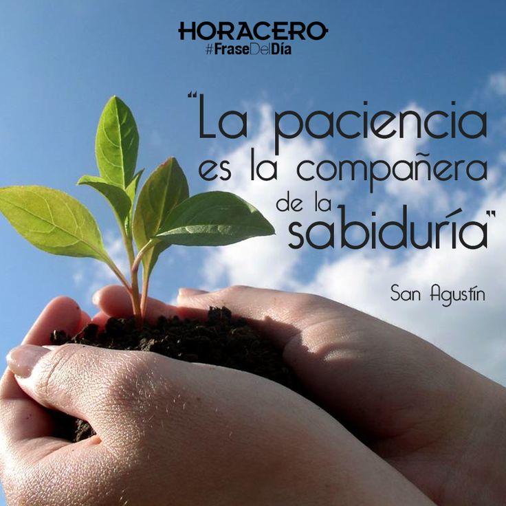 """""""La paciencia es la compañera de la sabiduría"""" San Agustín #Frases #FrasesdelDía"""