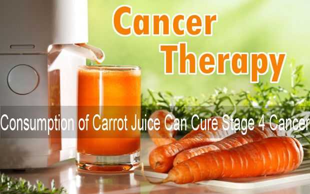 What if I told you carrots cure cancer? - NaturalNews.com