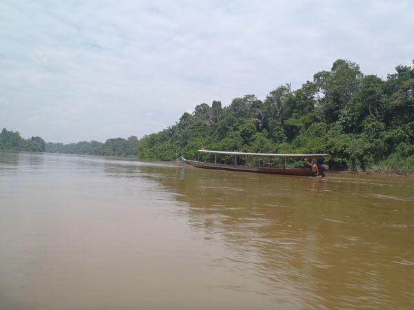 National Park (Taman Negara), #Malsysia, #TamanNegara