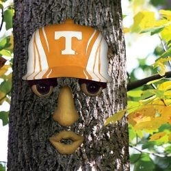 Tennessee Volunteers Forest Face