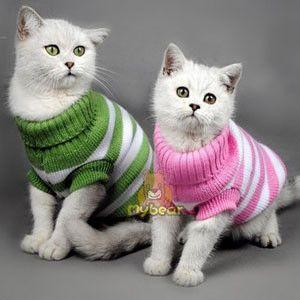 vestidito tejido a crochet paso a paso para gatita - Buscar con Google
