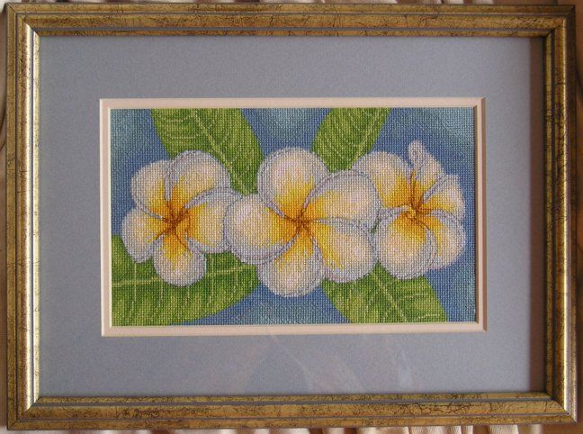 Frangipani cross stitch by SmiteTheeWithApples  The first cross stitch I designed :)