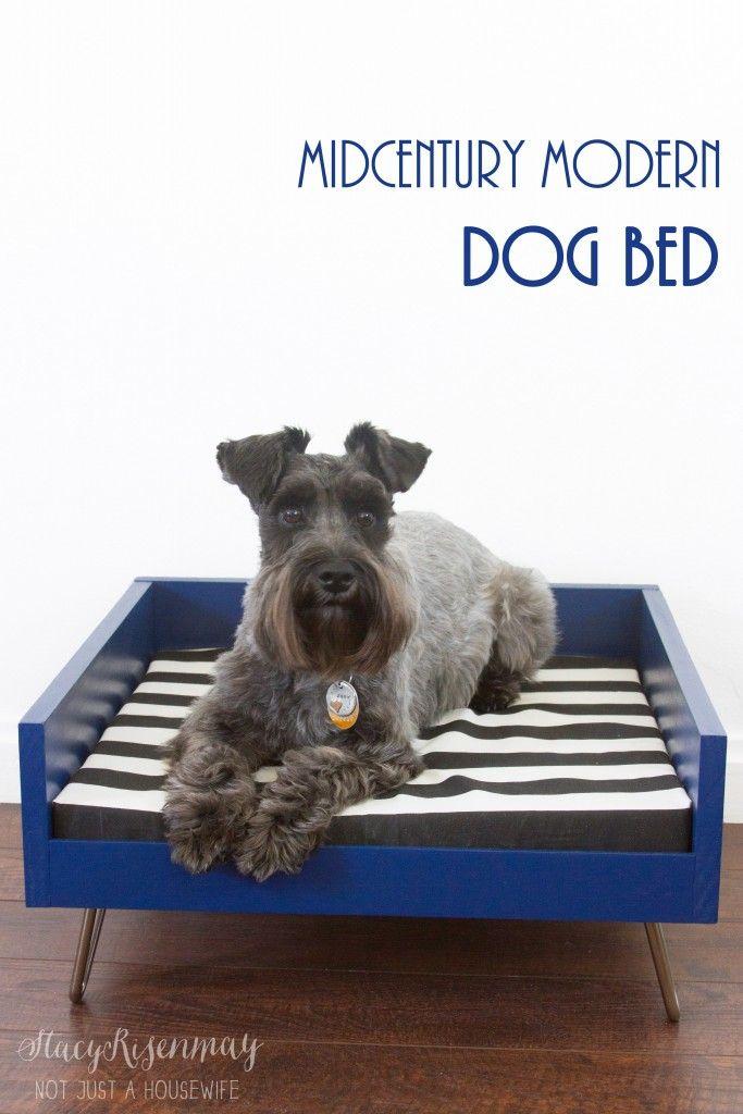mid century modern dog bed
