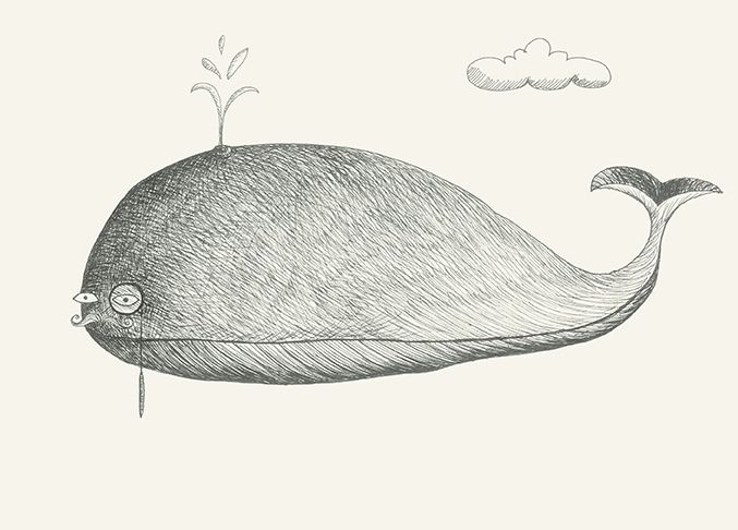 https://flic.kr/p/DeMsw3 | Mr Whale #whale#animals#drawing#glasses#elegant by Leo Bellei