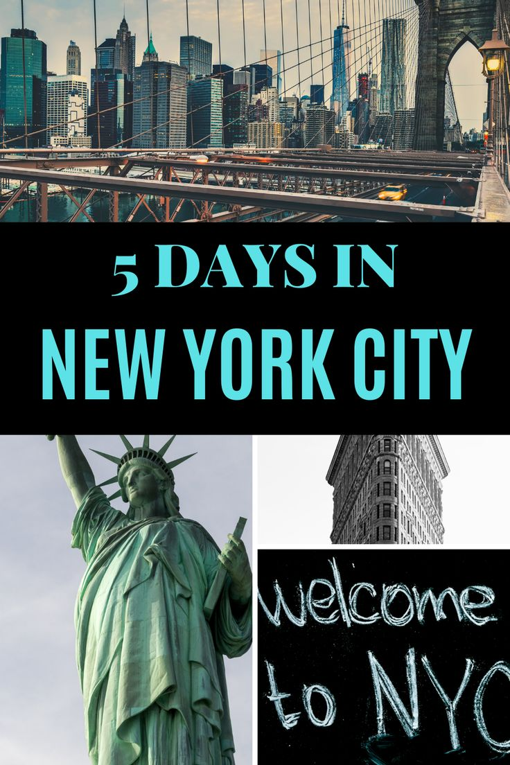 5 Days in New York City