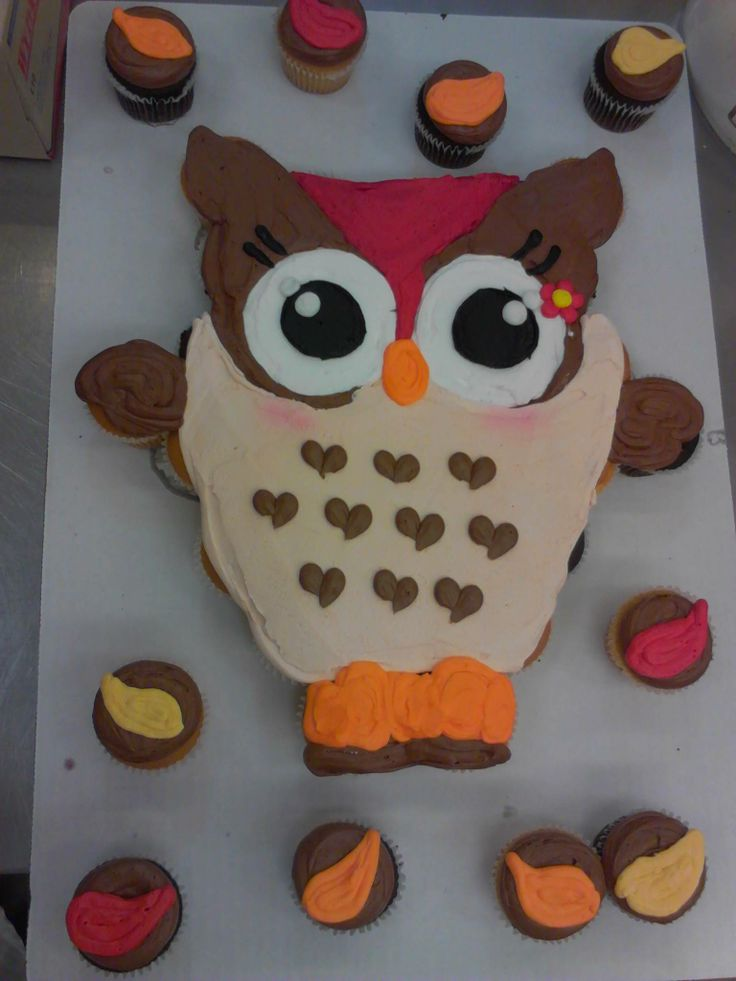 Best 25 Owl Cupcake Cake Ideas On Pinterest Owl