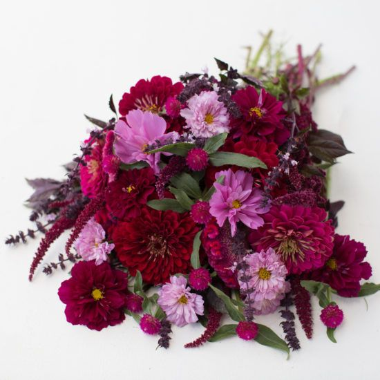 Jewel Toned Seed Collection. This dazzling mix is a saturated array of berry tones, including deep purple, wine and cranberry.  This special collection contains six packets of flower seeds hand selected to provide foolproof bouquets. Available in the Floret Shop.