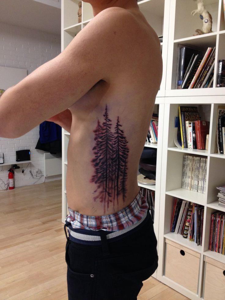 Evergreen tree tattoo i love body art pinterest for Evergreen tree tattoo