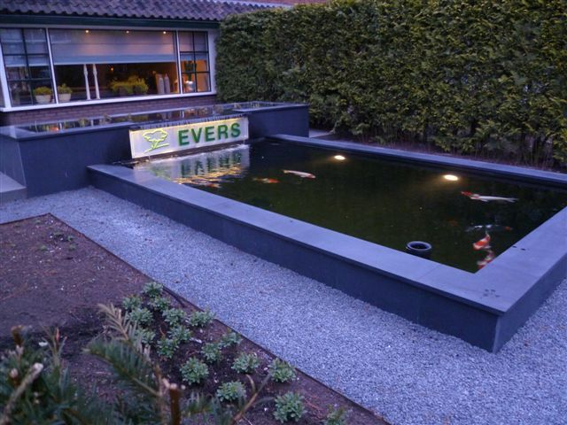 reclame vijver koi plantenfilter strakke vijver tuin idee