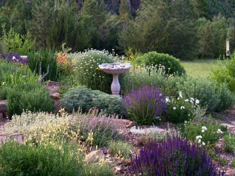 Western Garden Ideas garden terracing winner of sunset magazine western garden design award 15 best gardens Western Landscape