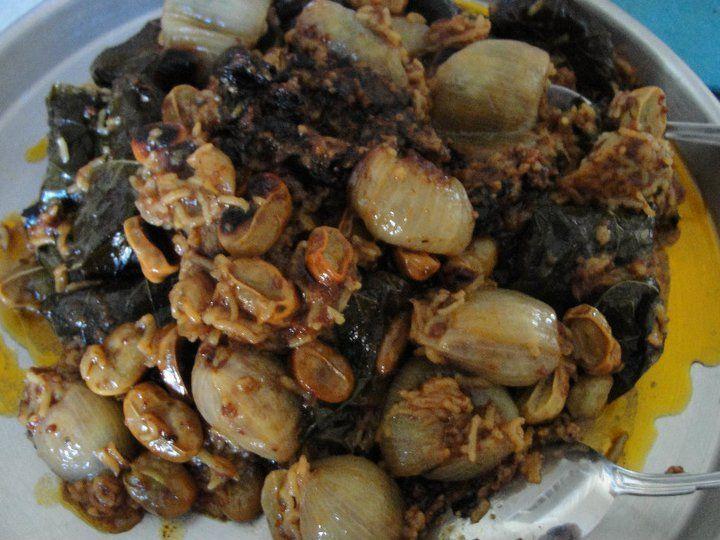 Dolma Turkish Food Recipe