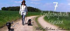 Kalmerende signalen bij honden wordt vaak over het hoofd gezien. In deze blogserie nemen we je mee in de wereld van signalen die jouw hond dagelijks aan je laat zien!