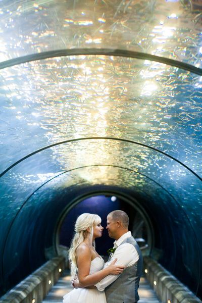 Newport Wedding Photographer: Oregon Aquarium, coast wedding, coast wedding photography, beach wedding photography, oregon coast wedding photographer, coast wedding ideas, beach wedding ideas, posing ideas, wedding ideas, aquarium wedding