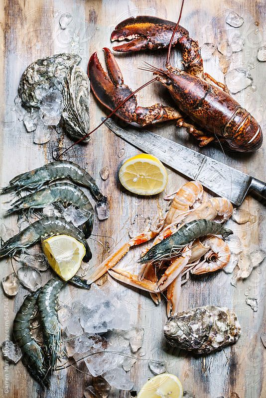 detailed shots. variety of seafood that we can incorporate with other materials.