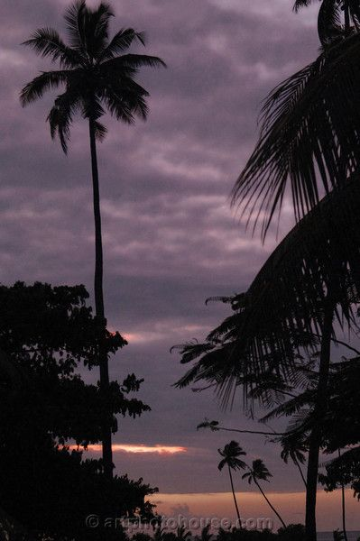 Beautiful Photo of the Last Rays Of The Day on a Fiji Island of the Coral Coast ~ ArtPhoto on Zazzle