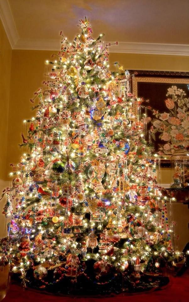 No Such Thing As Too Many Lights Beautiful Christmas Tree Christmas Lights Christmas Decorations