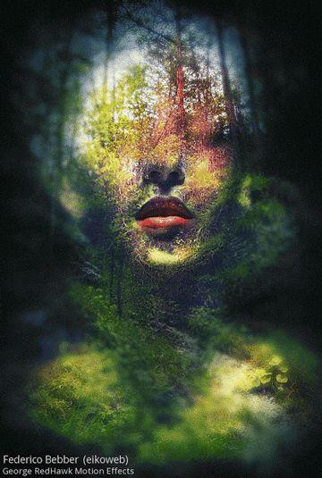 Blätter, die im Wind sich bewegen die im Sonnenschein sich drehen die fester Teil des Astes, die kleiner Teil des Baumes, die unabdingbar sind für Leben, wie zart das Blatt, wie filigran, die Adern, wie effizient der bauplan, wie meisterhaft das Mosaik, wie bedingungslos zum ganzen,welch Baum und Wald kann ohne sein. © Rainer Pflieger