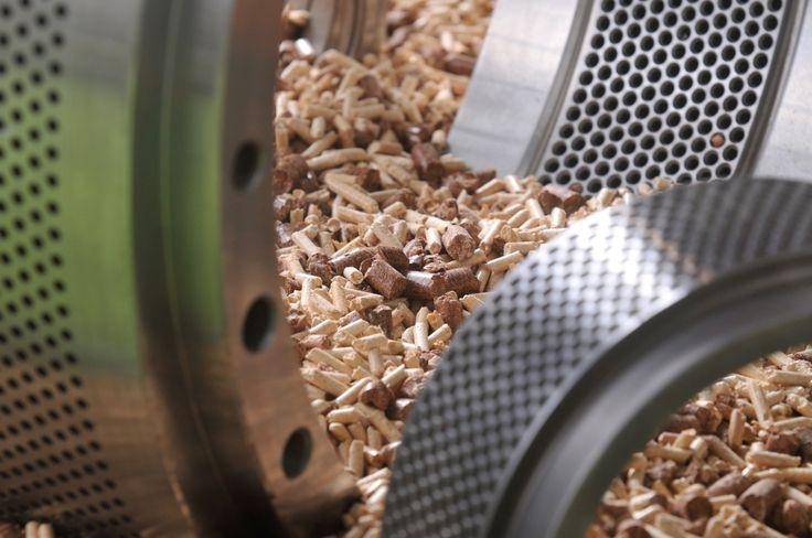 La bioenergía sigue siendo la mayor fuente de energía renovable a nivel mundial. Peletizadora y pellets. #biomasa @expobiomasa
