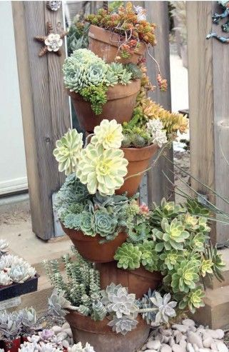 Succulents in this tipsy pot planter make a gorgeous display.: