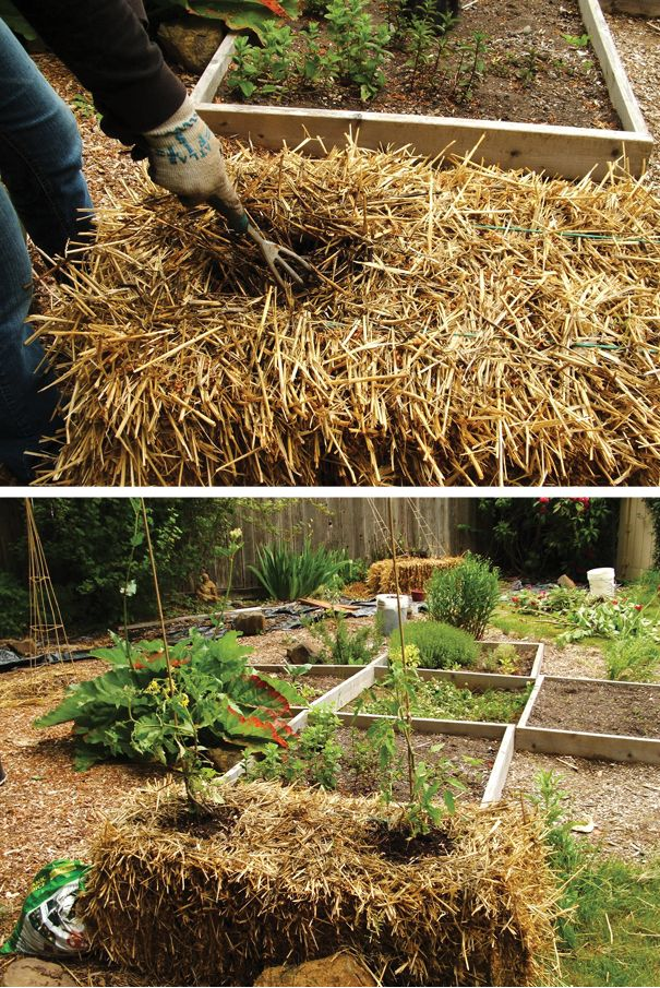 17 best images about raised beds bales of straw on for Garden design yates