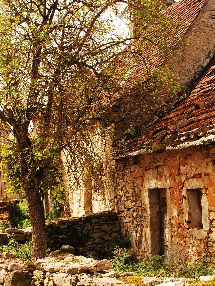 Un arbre, un muret, deux maisons et beaucoup de vieilles pierres.